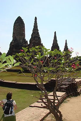 thailand_testimaonial