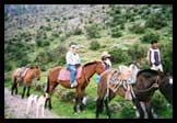 horse_peru